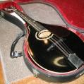 Mandolin - Gibson, 1928