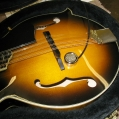Mandolin - Fender