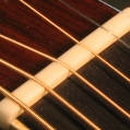 New bone nut. Pic 9