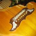 Gibson - Dove