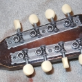 Mandolins -  twin1945 models